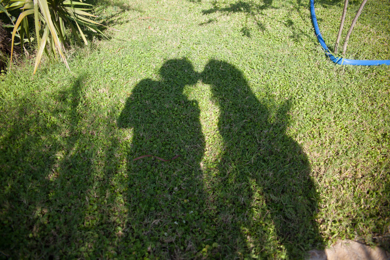 Shadow of couple kissing in park