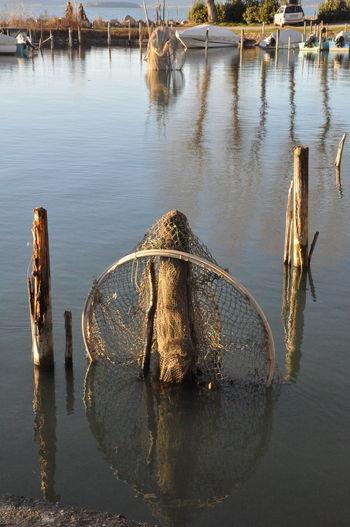 Water Reflection Lake Outdoors Nature No People Day Tree Sky Trasimenolake