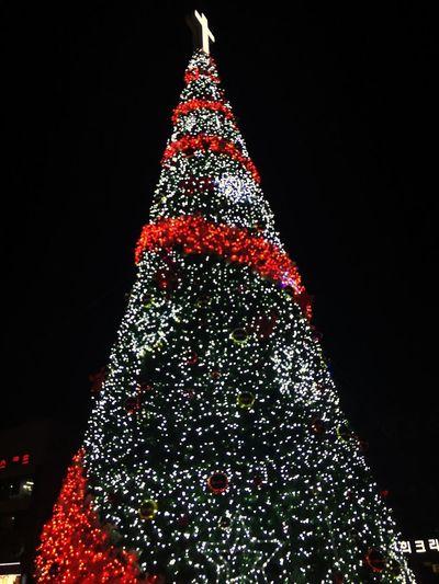 트리 Christmas