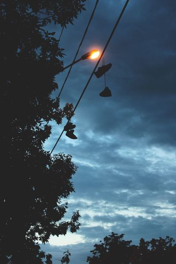 Beauty In Nature Cable Cloud Cloud - Sky Cloudy Electric Light Growth Illuminated Lighting Equipment Low Angle View Nature No People Outdoors Pole Power Cable Power Line  Power Supply Scenics Sky Street Light Sun Sunset Tranquility Tree