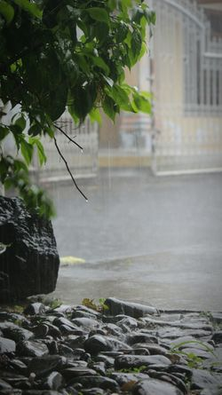 Rainy Days Hard Rain Sunday Evening in Malalayang Manado Eyeemmanado Hello World