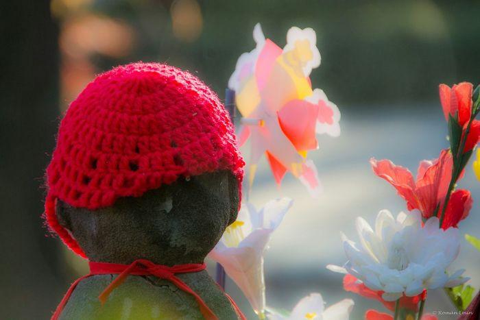 El jardín de los niños no nacidos, ubicado en el Templo Zōjō-ji es un jardín particular. Las filas de estatuas de piedra de los niños representan a los niños sin nacer de Japón. Los padres pueden elegir una estatua en el jardín y decorarla con pequeñas ropas y juguetes. Por lo general, las estatuas están acompañadas por un pequeño regalo para Jizo, el guardián de los niños no nacidos, para asegurarse que ellos sean llevados al más allá. De vez en cuando piedras son amontonadas junto a la estatua, esta tiene la intención de acortar la cantidad de sufrimiento que un niño tiene que sufrir a través del camino al más allá. Nikon D7100   250mm   1/400 sec   f/6.3   iso 500 Wanderlust Through My Lens