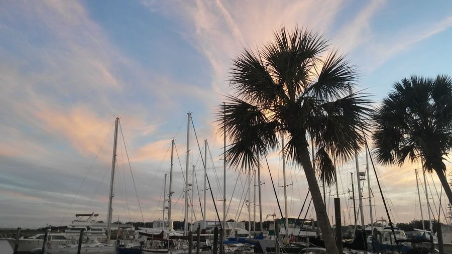 Palm trees by boats moored at harbor against sky during sunset