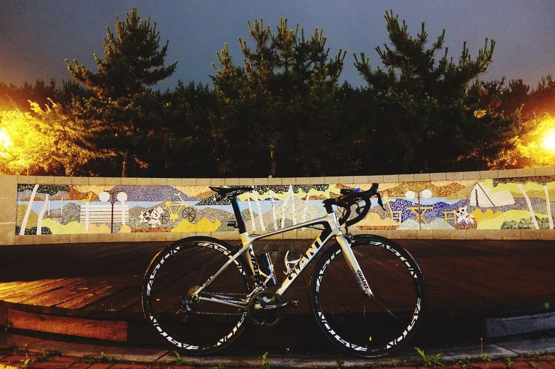 Giant Cycling