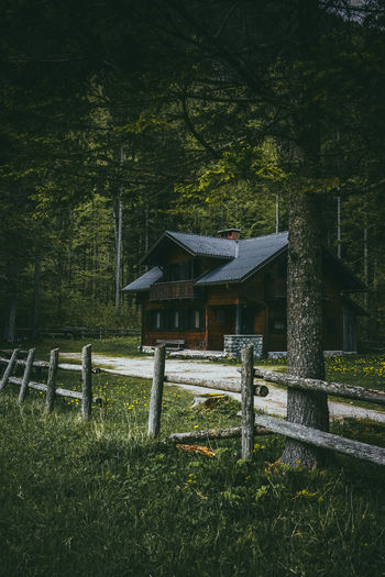 Cabin in the woods Architecture Beauty In Nature Cabin In The Woods Forest Germanroamers Grass Landscape Natural Beauty Nature Nature Nature On Your Doorstep Nature Photography Nature_collection Naturelovers No People Outdoor Outdoor Photography Outdoors Outside Slovenia Tranquility Tree Tree Trees Wood - Material