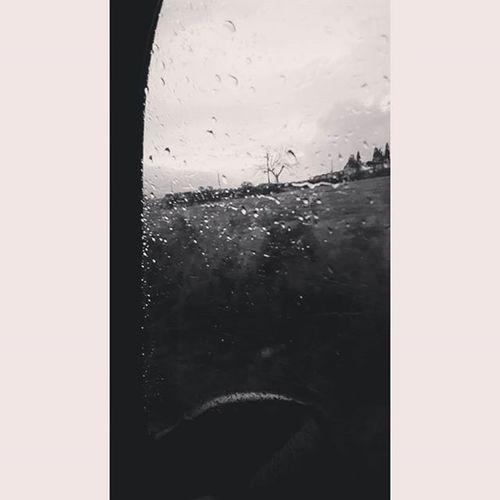 C'è gente che non ha paura di rimanere sotto la pioggia.• Piove Acqua Biancoenero Snapchat Nocrop Pic Picoftheday Instapic Instacool Cool Instagood Photo Ph Images Foto L4l F4F Followme Tagsforlike Solocosebelle Adorolapioggia Pioggia Malinconia Paura Sottolapioggia bagnarsi