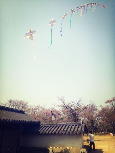 선진공원, Traditional Sacheon South Korea