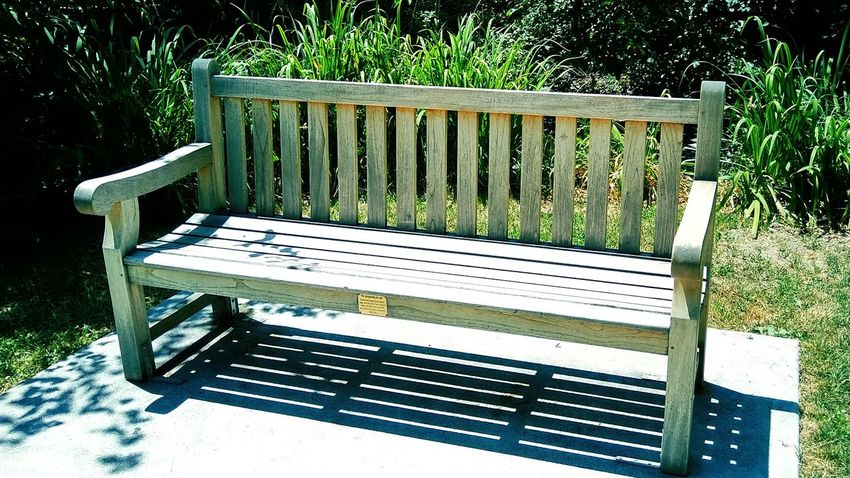 Nothing more tranquil than a park bench in a secluded spot. Day Sunlight Shadow Seat Green Color Outdoors Park - Man Made Space Bench Wood - Material Nature EyeEmNewHere EyeEm Selects Summer Beautiful Nature Beauty In Nature