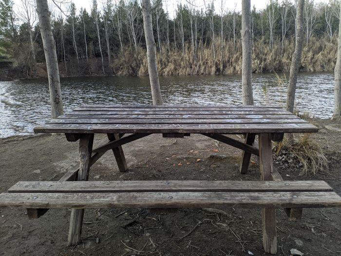 Empty bench on table by trees
