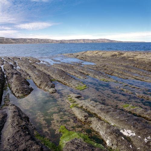 Coast of the atlantic ocean, in patagonia