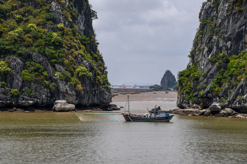 Halong Bay Vietnam Bay Beauty In Nature Cloud - Sky Day Formation Mode Of Transportation Mountain Mountain Range Nature Nautical Vessel No People Outdoors Rock Rock - Object Rock Formation Scenics - Nature Sea Sky Solid Tranquil Scene Tranquility Transportation Water Waterfront