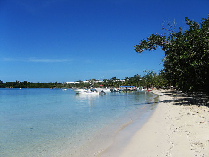 Beach Beauty In Nature Blue Clear Sky Day Growth Jamaica Nature Nautical Vessel No People Non-urban Scene Our Beach Sand Scenics Sea Shore Sky Tourism Tranquil Scene Tranquility Tree Vacations Water Waterfront