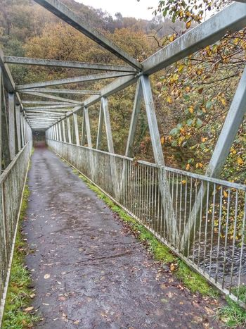 Autumn bridge The Way Forward Day Bridge - Man Made Structure Outdoors No People Built Structure Architecture Footbridge Nature Tree Greenhouse Sky
