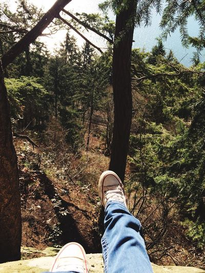 Height Horizon Over Water Cliff Low Section Human Leg Human Body Part Personal Perspective Shoe Lifestyles Leisure Activity One Person Tree Men Day Real People Outdoors Nature Canvas Shoe Adult People