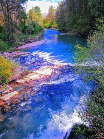 EyeEm Diversity Outdoors Biking And Photography Water Tree Beauty In Nature Blue River Wellness Mountain Bike Togetherness Happiness Biking Tour