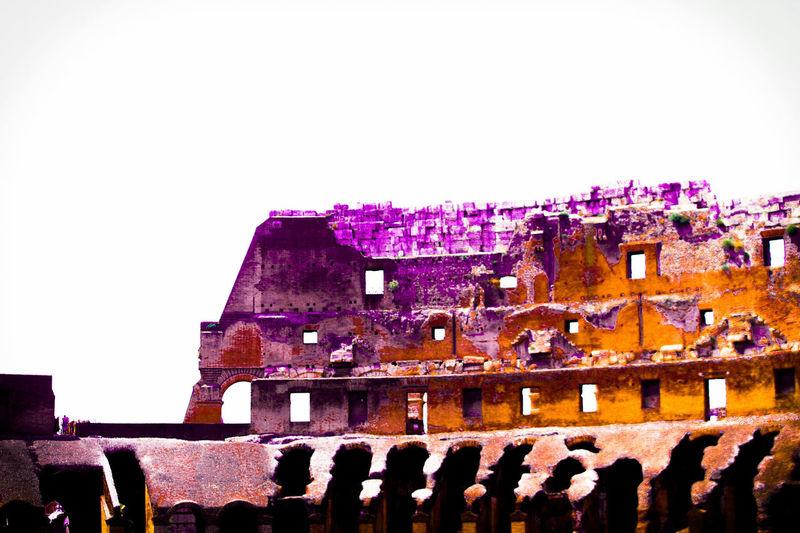 Rome Italy Rome RomanColosseum Complimentary Colors Vibrant Colors Vibrance Complimentary Colors Orangeandpurple Purpleandorange