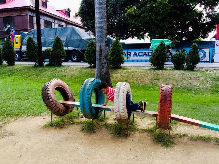 Tree Grass Architecture Green Color Outdoor Play Equipment Playground Street Art Growing Blooming Young Plant