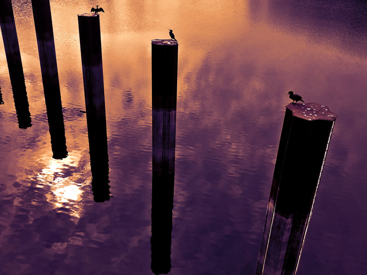 water, no people, outdoors, spirituality, sunset, wooden post, sky, day, nature, close-up