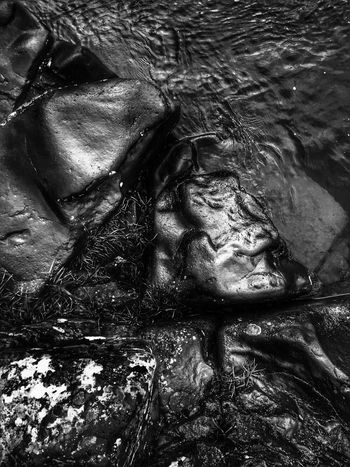 Outdoors I See Faces Hidden Faces Close-up Nature Black And White Faces In Nature Waterfront Views Beauty In Nature Abstractions Textured  Shapes In Nature  Layers And Textures View Weathered Perspective Natural Condition Stone Abstract Nature Rock - Object Background Scenic Water Shore