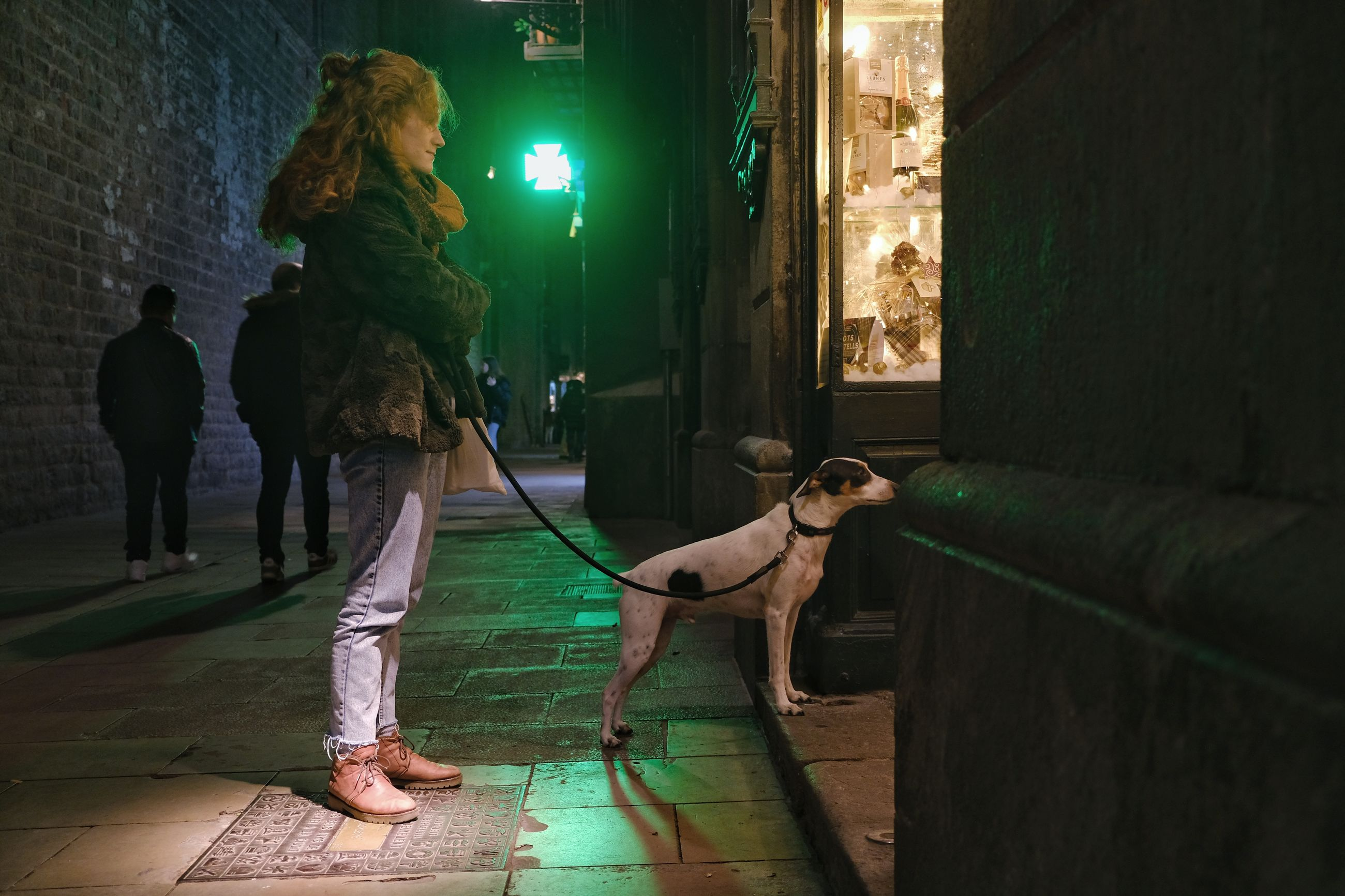 mammal, domestic animals, domestic, pets, one animal, dog, canine, real people, full length, leash, pet leash, architecture, vertebrate, people, casual clothing, women, pet owner, night