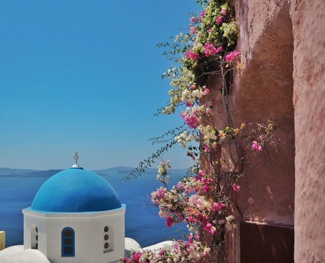 Beautiful view Greek Church Bougainvillea Building Exterior Architecture Built Structure Plant Nature Building Religion Clear Sky Dome Flowering Plant Place Of Worship Blue Spirituality Belief Sky Tree Day No People Flower Sunlight