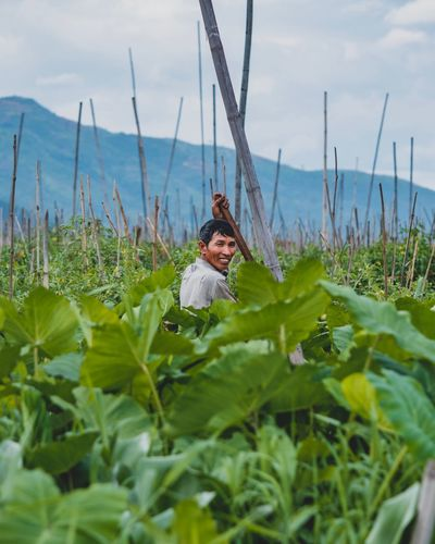 Portrait Lake Myanmar Culture Inle Lake Inle Burma Myanmar Tribe Plant Nature Growth One Person Leaf Day Plant Part Sky Green Color Beauty In Nature Cloud - Sky Field Land Selective Focus Representation Water Real People Young Adult Flower Outdoors EyeEmNewHere