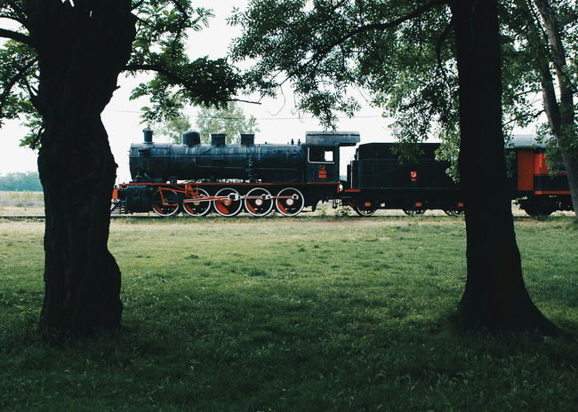 Train Outdoor Tree Steam Engine