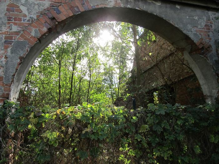 Portal Abandoned Arch Architecture Built Structure Indoors  Mansion Nature No People First Eyeem Photo