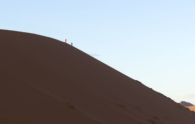 Adventure Animal Themes Arid Climate Beauty In Nature Clear Sky Day Desert Dune Low Angle View Namib Desert Namib Dunes Namibia Namibia Landscape Nature One Man Only One Person Outdoors People Real People Sand Sand Dune Sky Sunlight Travel Destinations