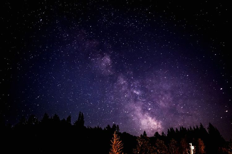 Beautiful night tonight🌌 Stars Hanging Out Relaxing Taking Photos Enjoying Life Forest Outdoors Sumertime Walking Around Taking Pictures Nikond3300 Editedbyme Astronomy Galaxy Milkywaygalaxy