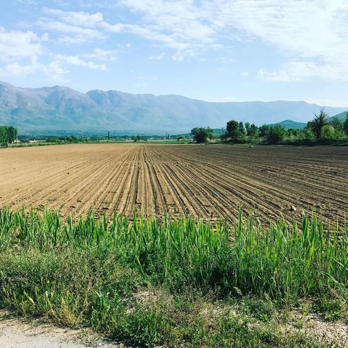 Agriculture Field Rural Scene Farm Landscape Cloud - Sky Sky Tranquil Scene Tranquility Nature Growth Beauty In Nature Scenics Cultivated Land Day Mountain No People Outdoors Tree Plowed Field