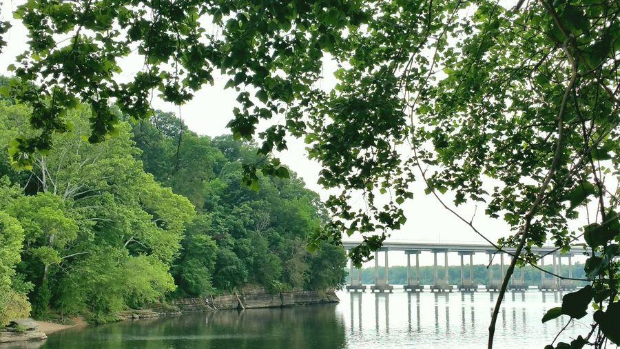 O'Neal Bridge