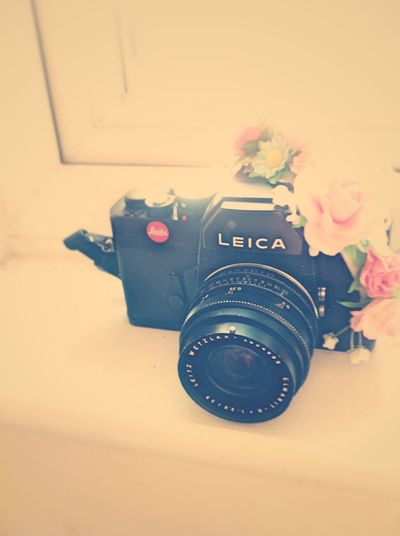 Taking Photos Hello World Enjoying Life Flowers