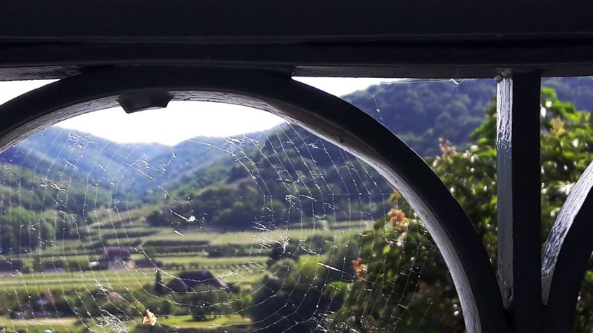 Spiderweb Collection Landscape Eye4photography  My Soul's Language Is📷 Simple Things Are The Best  Enjoying The View For My Friends 😍😘🎁 Tranquil Scene Memories ❤ Eyecatching Austriaholidays Tranquillity