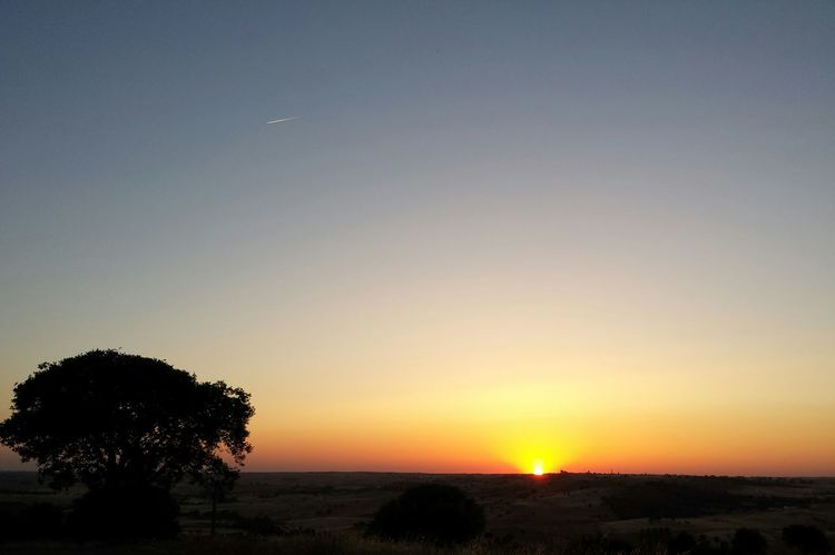 Nofilter Sunset Alentejo EyeEm Nature Lover EyeEm Best Shots Eye4photography  Plane