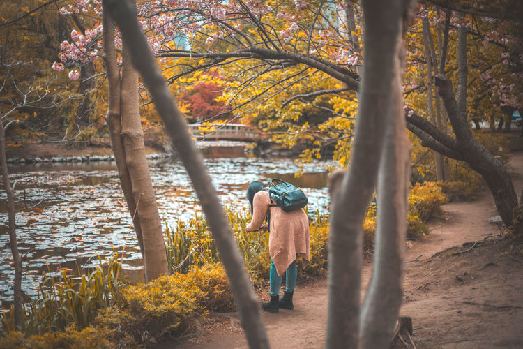 Rear View Of Woman Standing By Tree In Forest During Autumn