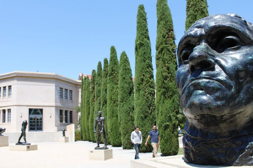 Big Head Campus Summer California Higher Education Student Life Education Park Alley Stanford Stanford University Day Outdoors Clear Sky Standing Real People Sunlight Men Architecture Growth Adult