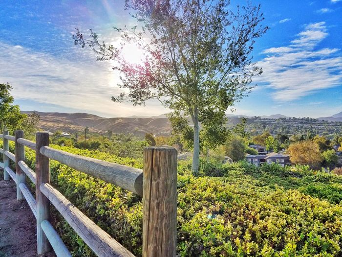 Friday Before My Work Out Beautiful Scene Stop To Enjoy The View Hilltop At The Park Wooden Post Tranquil Scene Tree Sun Landscape Sunny Canyon Country Homes Mountain Range Looking At View Morning Sun Weekend Ahead Sky_collection Cloudy Skies Eye Em Gallery Best Of EyeEm Photo Of The Day TakeoverContrast Dramatic Angles Colors