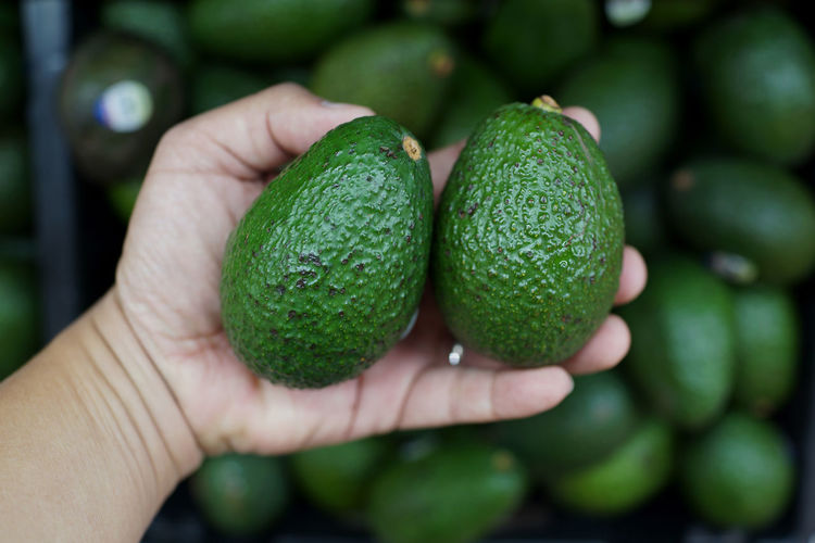 Close up hand holding Avocado Freshness Avocado Close-up Day Focus On Foreground Food Freshness Fruit Green Color Healthy Eating Holding Human Body Part Human Hand Market Stall On Sale One Person Organic Food Outdoors People Real People