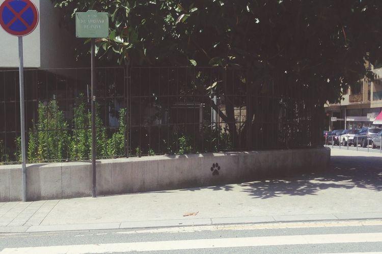 Dejar huella Huella Ciudad Oporto Encantos Mirar Observar Detectar