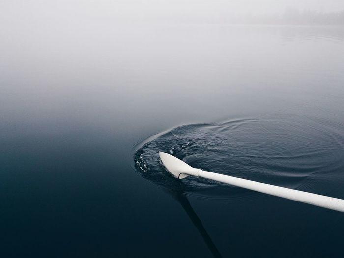 Cropped Image Of White Oar In Lake