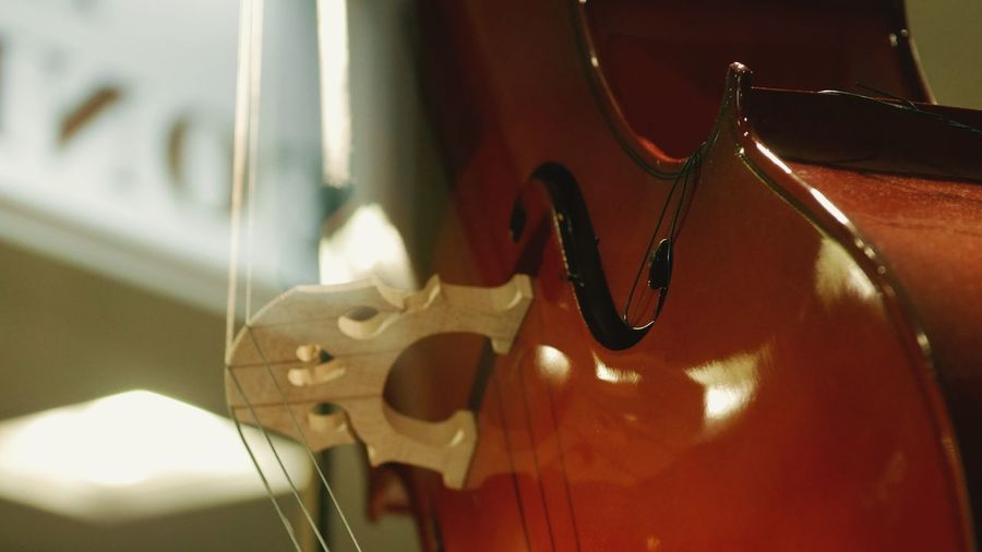 String Instrument Music No People Arts Culture And Entertainment Musical Instrument Close-up String Indoors  Musical Equipment Focus On Foreground Musical Instrument String Wood - Material Still Life Violin Illuminated