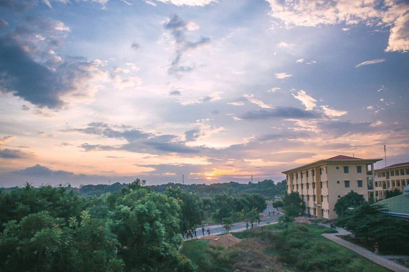Architecture Cloud - Sky Built Structure Tree Sky Building Exterior Sunset No People Outdoors Nature Day City Eyesight Front View Focus On Foreground The Great Outdoors - 2017 EyeEm Awards