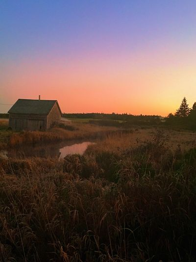 Field Landscape Clear Sky No People Built Structure Grass House Outdoors Nature Tranquility Architecture Sky Sunset Growth Building Exterior Rural Scene Farmhouse Day Beauty In Nature