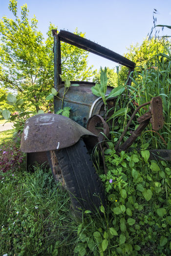 An old car, overgrown with weeds on its way back into the earth. Back To The Earth Beauty In Nature Close-up Day Decay Decomposition Deterioration Grass Green Green Color Growth Leaf Nature No People Old Old Car Outdoors Plant Run-down