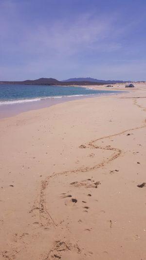 Playa punta