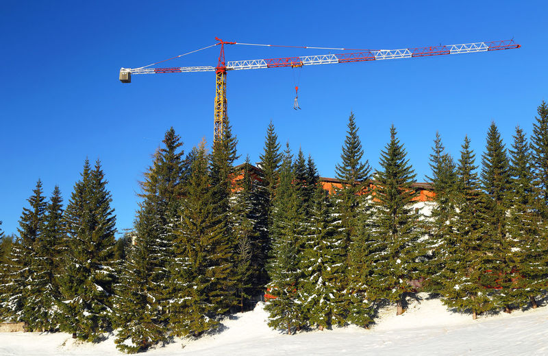 Trees and crane on snowy field against clear sky