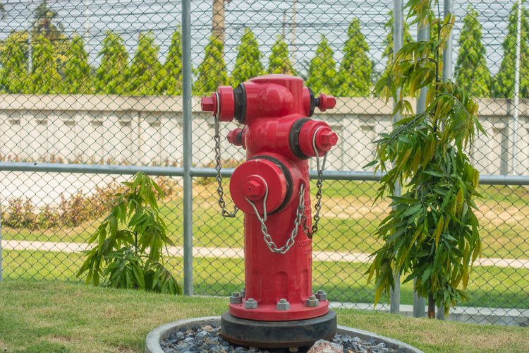 Accidents And Disasters Barrier Boundary Chainlink Fence Close-up Day Fence Fire Hydrant Focus On Foreground Grass Green Color Metal Nature No People Outdoors Plant Protection Red Safety Security