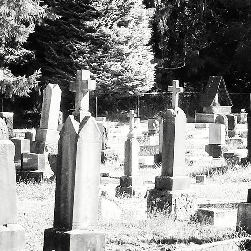 Seattle Seattle, Washington Puget Sound Luna The Homeless Rose Church Architecture Historical Building Cemetery Gravestone Tomb Graveyard Tombstone Place Of Burial Grave Cross Statue Mourning Death Sculpture The End Memorial