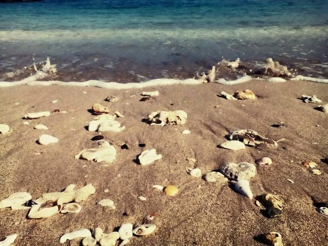 Sky Sand Landscape Beach Outdoors Day Shadow Multi Colored Sea And Sky Sea Seascape Sealife Sea View Seashells Beauty In Nature Nature Water